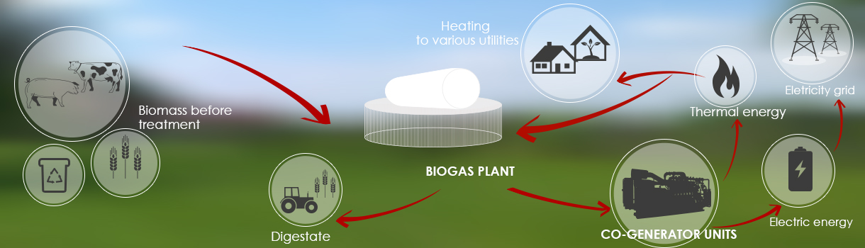 biogas_how a plant works